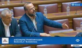 """Α.Τριανταφυλλίδης: «Σε ρόλο ψαλιδοχέρη το ΔΝΤ.Ώρα να μας κουνήσει το μαντήλι"""".(ΒΙΝΤΕΟ)"""