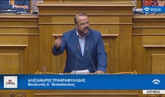 Πρόταση A.Τριανταφυλλίδη στη Βουλή: Προαπαιτούμενη η προσκόμιση ενημερότητας από τα κόμματα για να μετέχουν στις εκλογές.(Διάρκεια Βίντεο: 1.06)