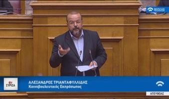 Α.Τριανταφυλλίδης:  «ΕΡΤ ανοιχτή στα προβλήματα της καθημερινότητας και στα αιτήματα της κοινωνίας».(ΒΙΝΤΕΟ-Ομιλία στη Βουλή)