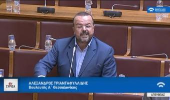 Α.Τριανταφυλλίδης στη Βουλή: -(2014) 6.200 παρκαρισμένα επενδυτικά σχέδια: Γιατί;     -(2014) 25 με 30 επενδυτικά σχέδια έλαβαν το 100% της επιδότησης χωρίς να έχουν βάλει ένα τούβλο: Γιατί;    -(2018)Ορισμένες από αυτές επέστρεψαν την επιδότηση: Γιατί;