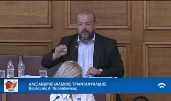 Α. Τριανταφυλλίδης: «Κράτος delivery των εντολών του Πρωθυπουργού-Χατμάνου σχεδιάζει ο Μητσοτάκης».(ΒΟΥΛΗ-VIDEO)