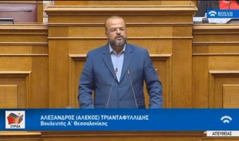 Α.Τριανταφυλλίδης στη Βουλή: «Με τεχνοκράτες-γκαουλάιτερ στα Υπουργεία θέλει να κυβερνά ο Μητσοτάκης».(VIDEO)