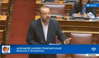 Α.Τριανταφυλλίδης στη Βουλή: «Κρούσματα βίας και ανομίας στο κέντρο της Θεσσαλονίκης-Αυτή την κανονικότητα μας επεφύλασσε η Κυβέρνηση της ΝΔ;» (VIDEO-0.43)