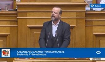 Α.Τριανταφυλλίδης προς βουλευτές ΝΔ: «Ψηφίζοντας τον Προϋπολογισμό, ψηφίζετε τις Πρέσπες».(Video 1:22)